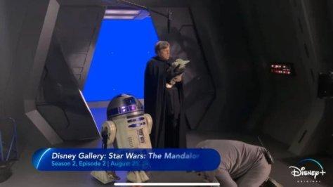 Disney Gallery The Mandalorian Mark Hamill
