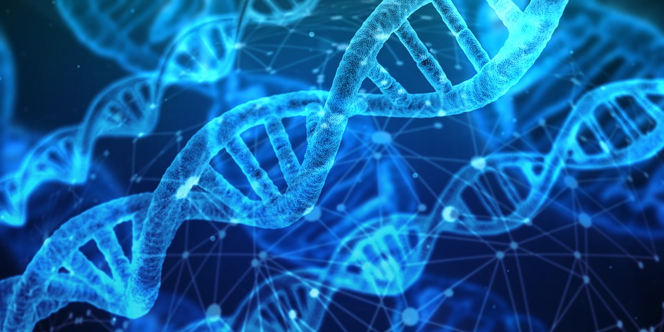 Building innovation into a small charity's DNA