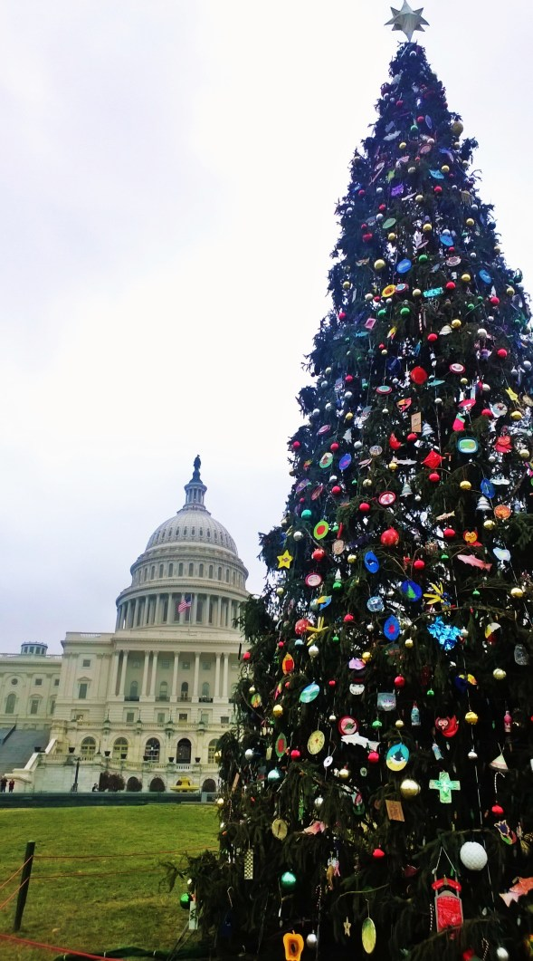 Capitol DC Christmas Tree