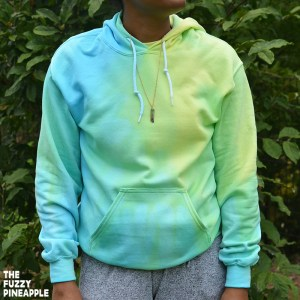 Color Wheel Hoodie in Blueberry Limeade