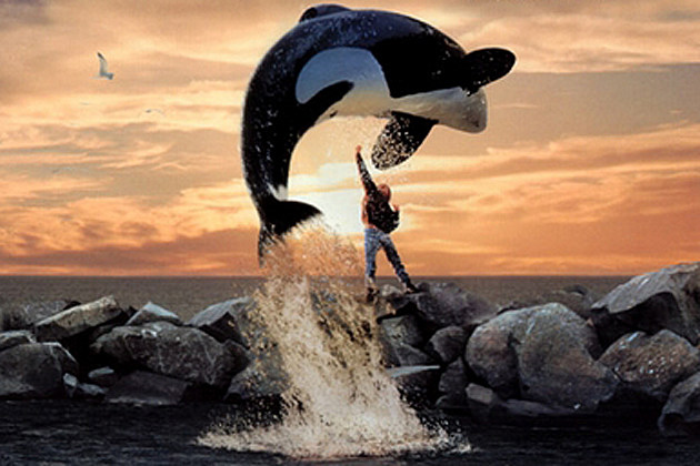 Image result for free willy