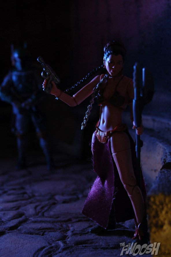 Princess Leia_16
