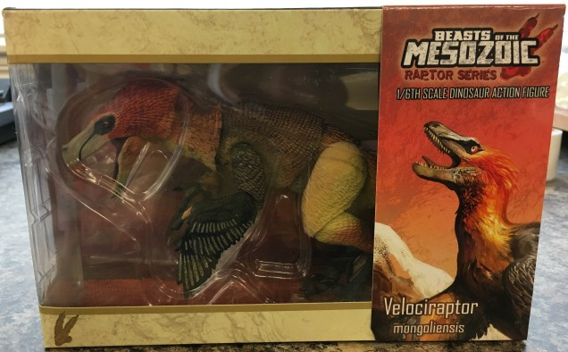 Velociraptor mongoliensis boxed