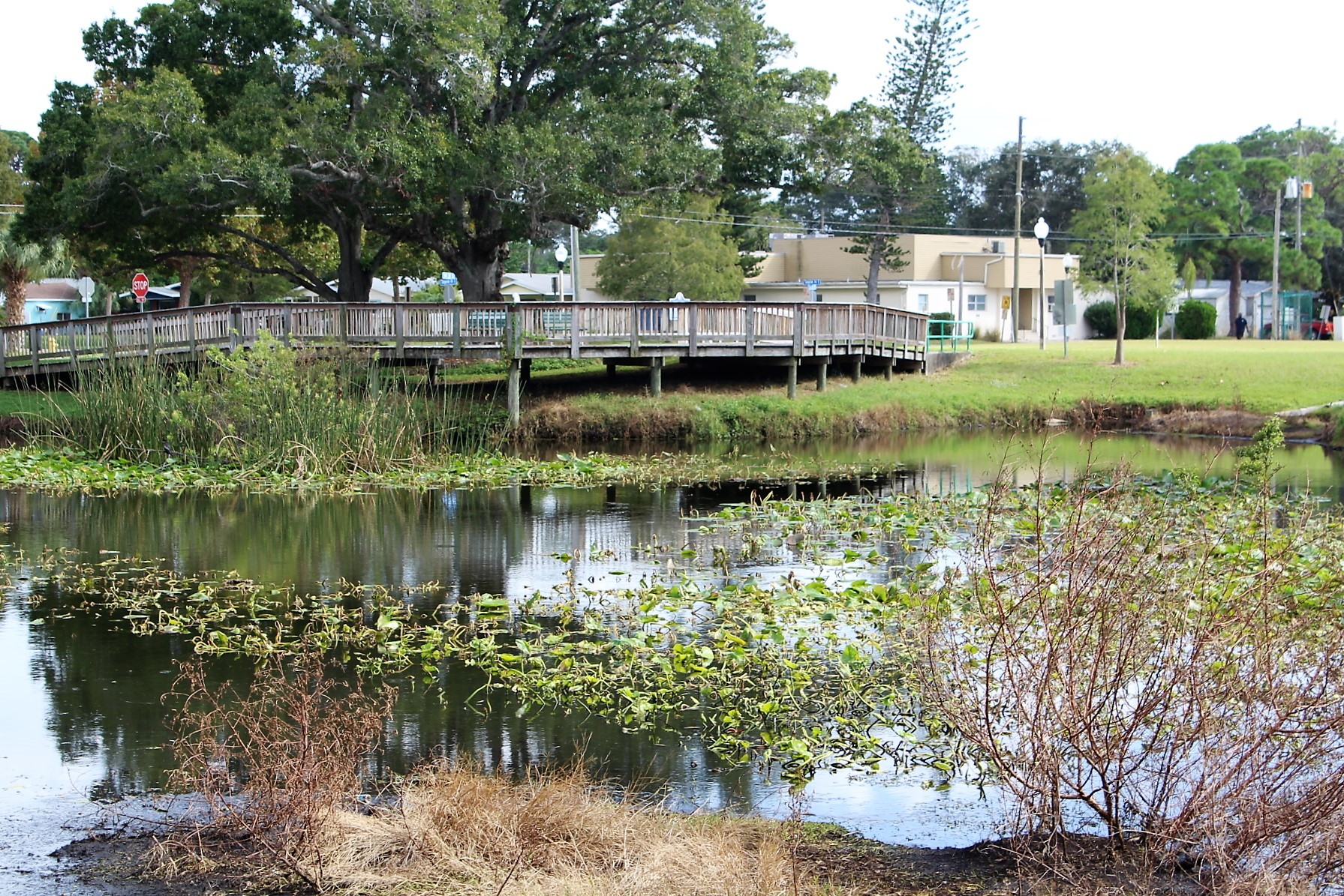 A retention pond with greenery and a wooden foot bridge.