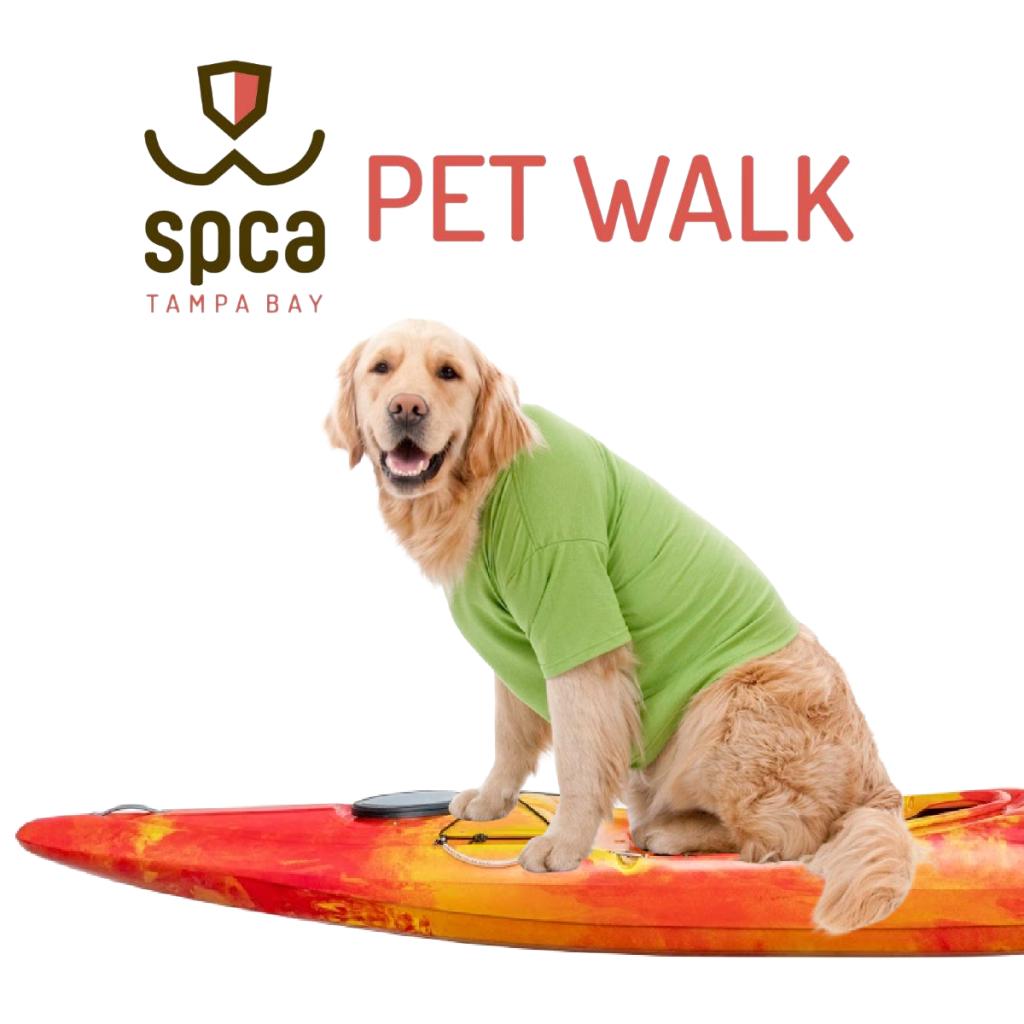"""Golden retriever on an orange surfboard with a """"SPCA PET WALK"""" banner"""
