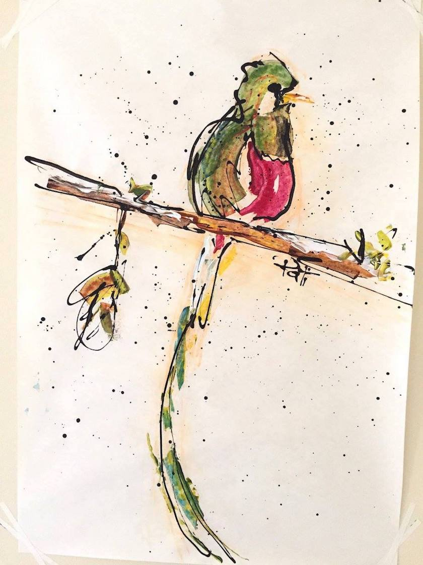 A drawing of a green and red bird on a branch