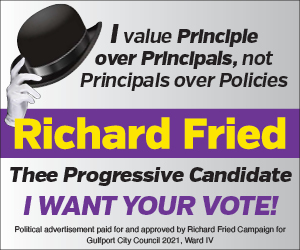 A political web ad for a Gulfport Florida City Council seat for Richard Fried