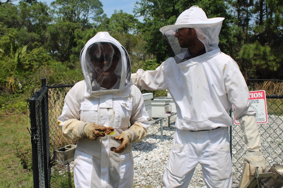 Two people in white beekeeping suits outside