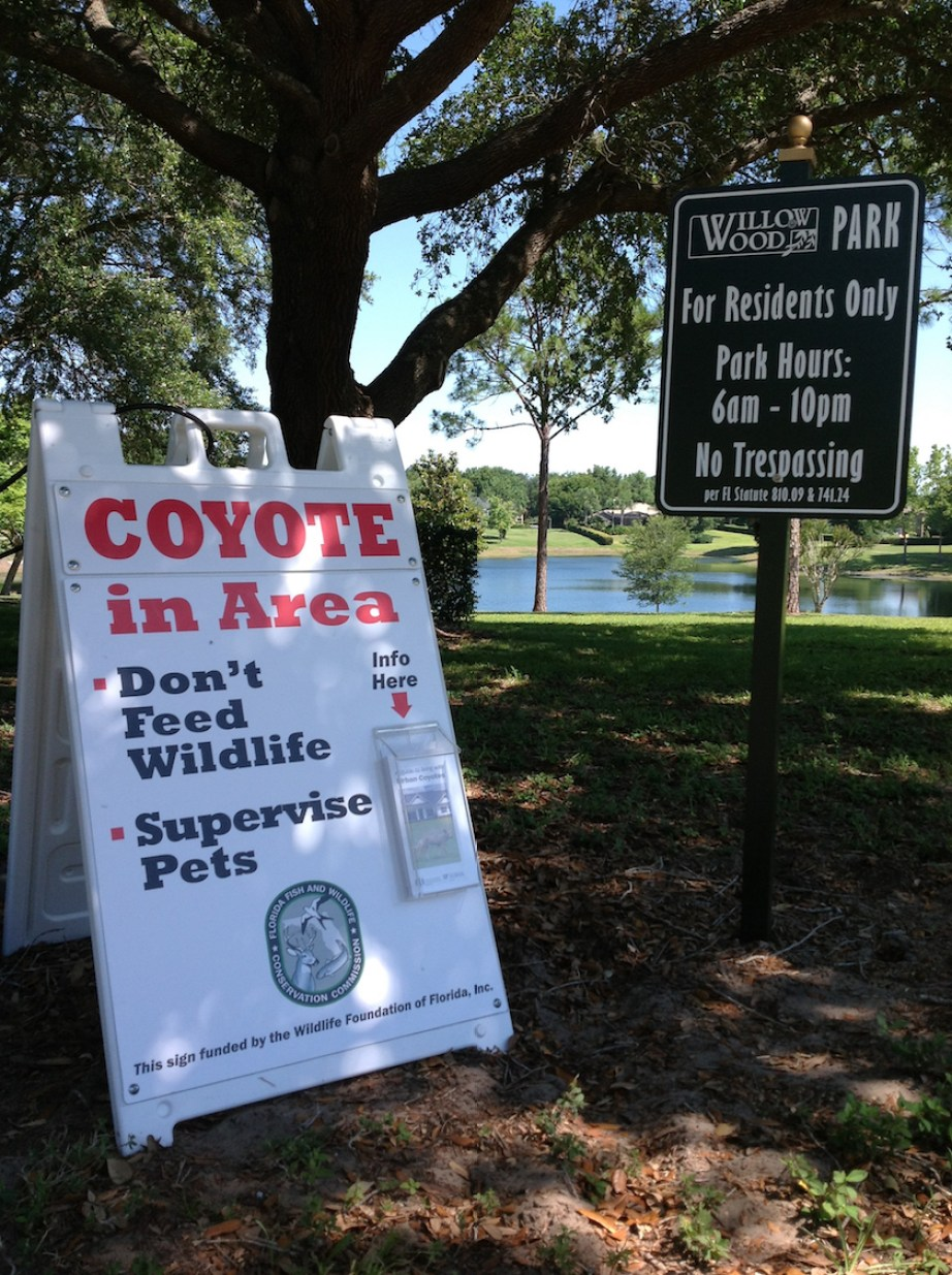 """A sign posting """"Coyotes in the Area; Don't feed wildlife; supervise pets."""""""