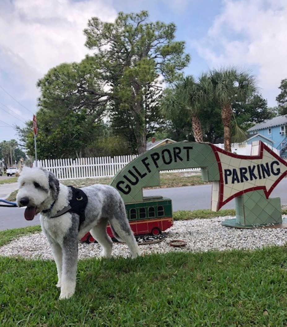 """A sheep dog outside next to an artistic sign that says """"Gulfport Parking"""""""