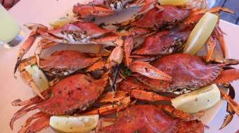 Red crab boil in pot with lemon wedges