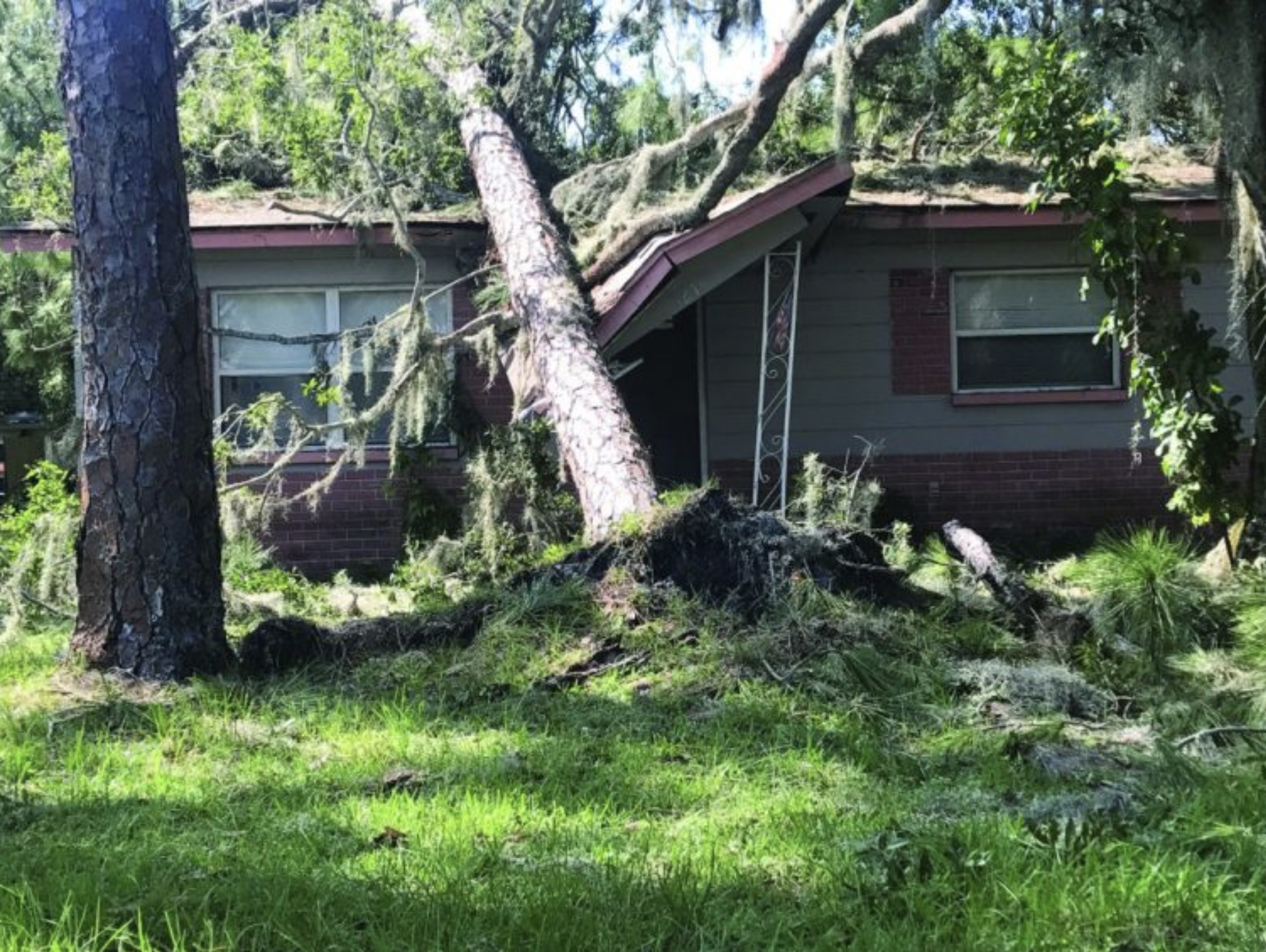 A photo of a tree crashing into a porch.