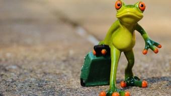 Green lizard mini statue holding suitcase