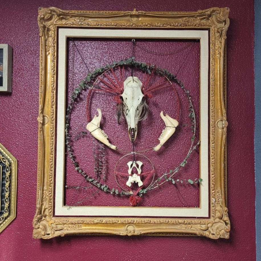 A photo of a piece of wall art consisting of a framed collection of bones in front of a burgundy wall.