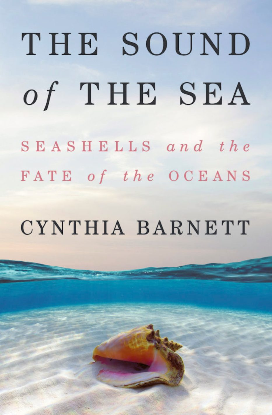 """A photo of a book cover with a blue sky dipping under the water with sand and a pink conch shell at the bottom that reads """"The Sound of the Sea: Seashells and the Fate of the Oceans; Cynthia Barnett"""""""