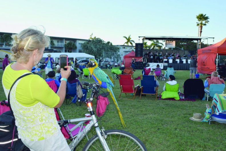 """Kelly Sheehan of Gulfport, with her bicycle, takes a photo of Up Up, her blue and gold macaw, as they listen to music by the Tomkats Jazz Orchestra. """"It's fantastic,"""" she said of the event. """"I hope it returns. There's some really good jazz music."""""""
