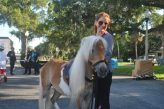 Shelly Mizrahi brought Amos the horse to help teach kids about bullying.