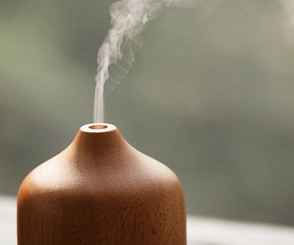 Stunning Diffuser Is Made With This Natural Material