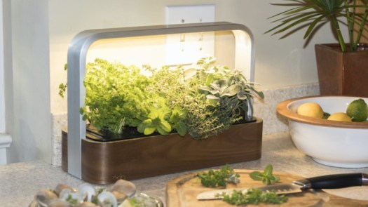 ēdn SmallGarden IndoorConnected Garden