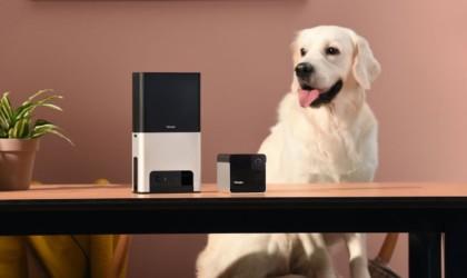 Petcube Bites 2 Smart Treat-Dispensing Camera