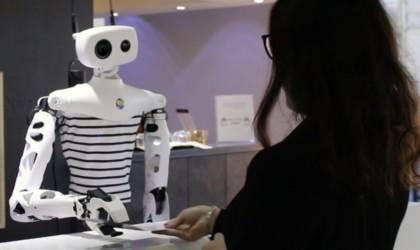 Pollen Robotics Reachy Open-Source Interactive Robot