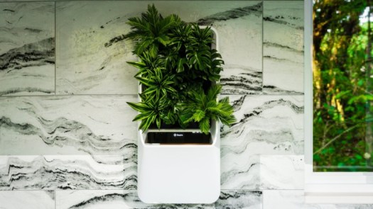Respira Air-Purifying Garden