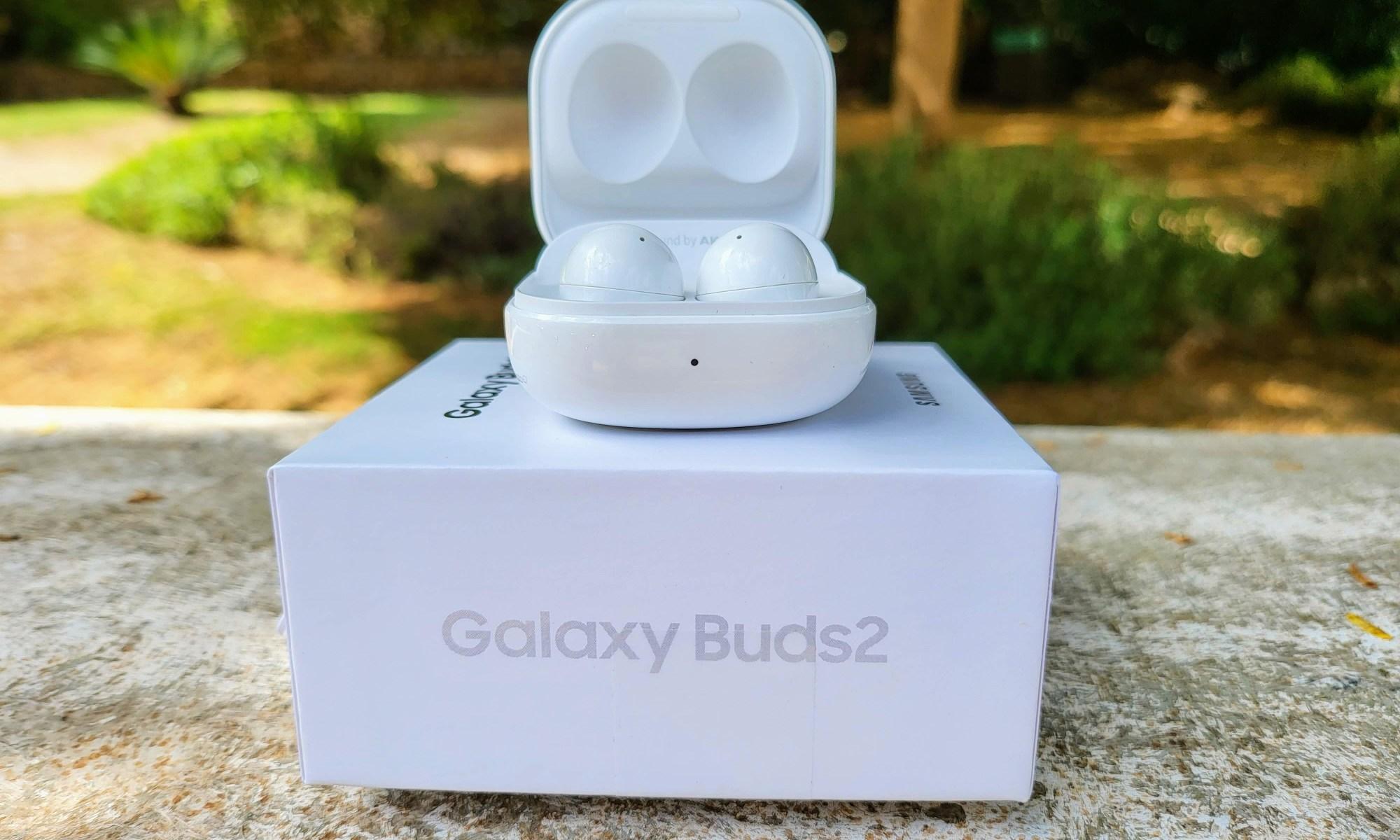 סמסונג Galaxy Buds 2. צילום צחי הופמן