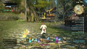 Final Fantasy XIV Gameplay