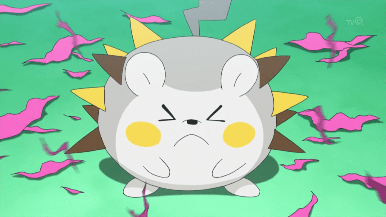 Pokemon togedemaru steals the show