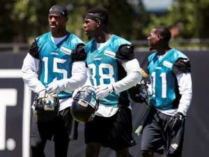 Allen Robinson injury