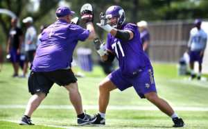 Minnesota Vikings offensive line