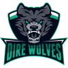 Dire Wolves will play Infinity Esports and Edward Gaming in Group A of the Play-In stage