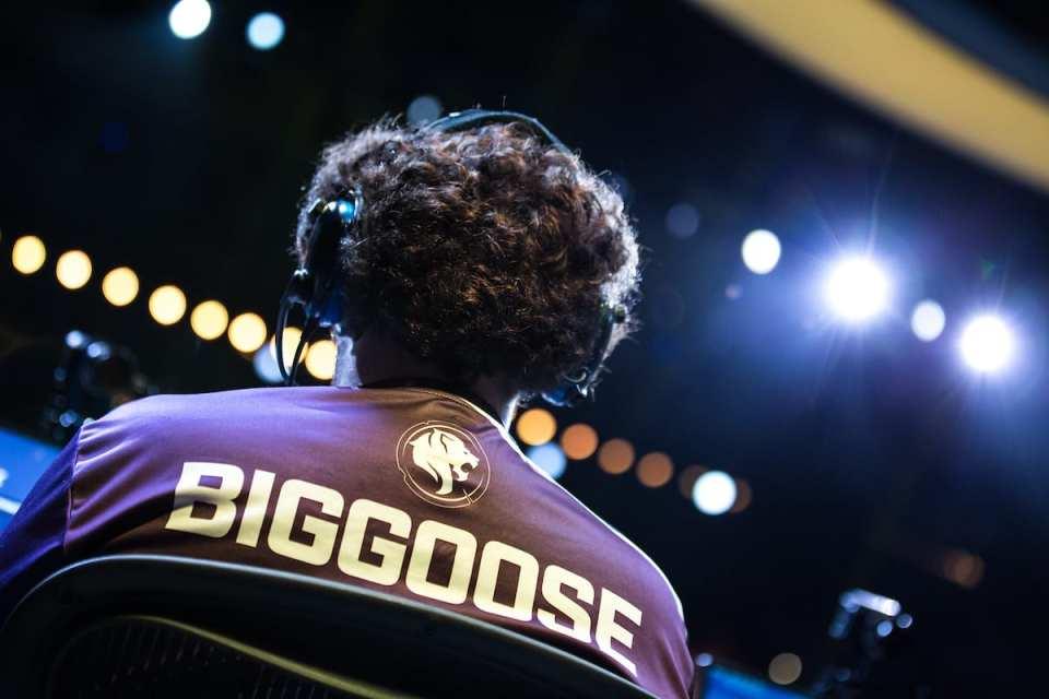 biggoose