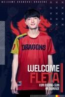 Dragons Fleta