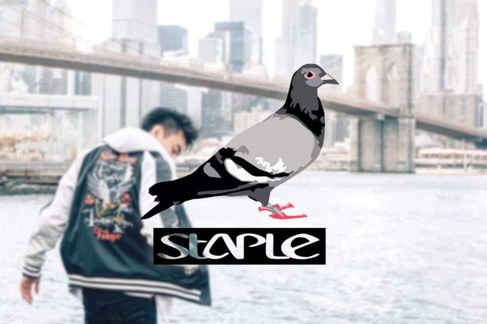 overwatch league pigeon