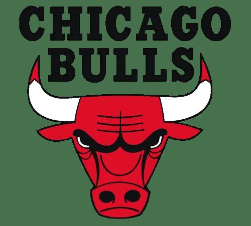2020 Chicago Bulls NBA Draft