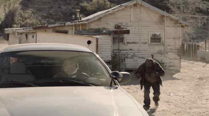 311 woodsman approaching car