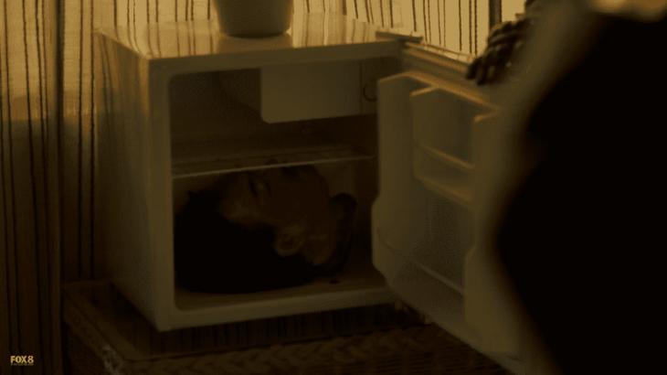 head in fridge again