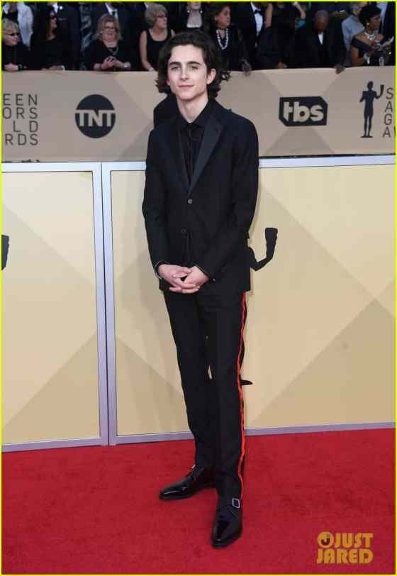 timothee-chalamet-suits-up-for-sag-awards-2018-04