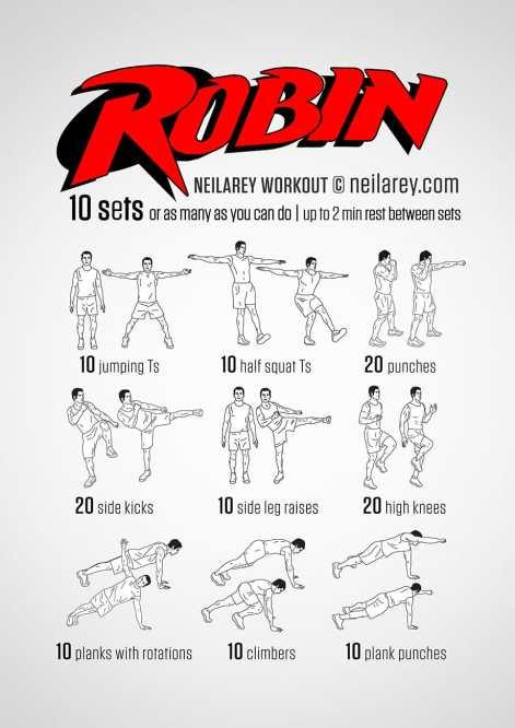 Robin (1).jpg