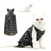 cat-fashion-Januar_1773586i