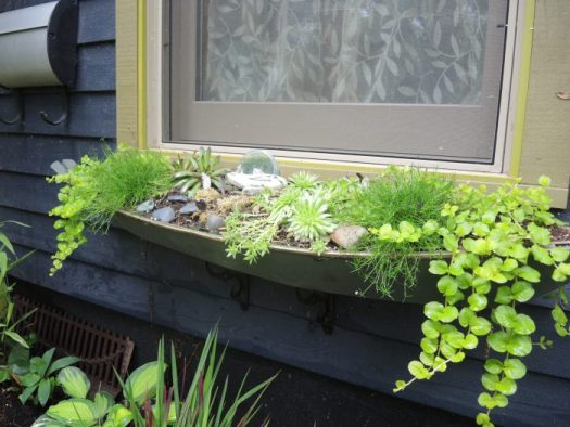 Unusual window box