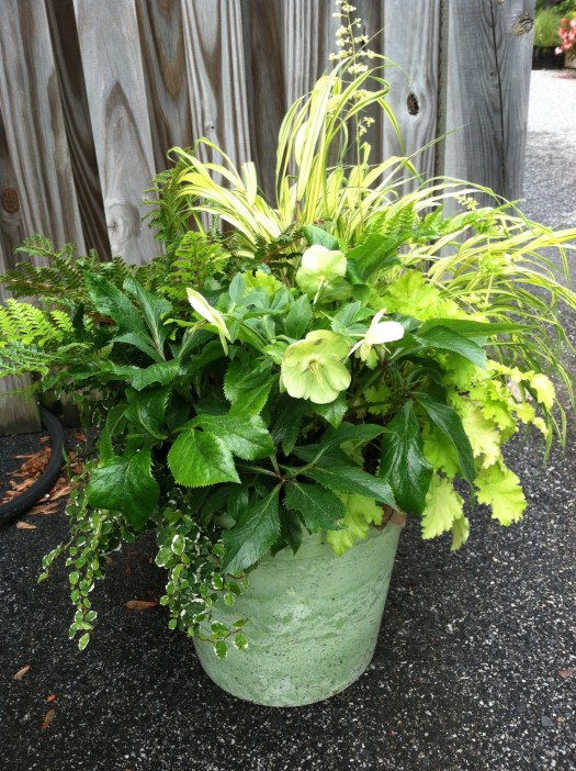 All foliage container by Leigh Barnes