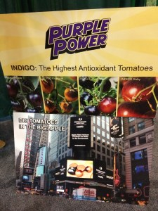 Purple Power Tomatoes by Mighty 'Mato Grafted Collection