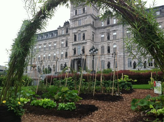 Edible gardening in Quebec City in front of Parliament building