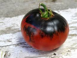 Indigo Apple Tomato available from Wild Boar Farms