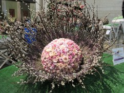 Philadelphia flower show 2014 005