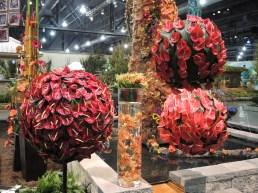 Philadelphia flower show 2014 062