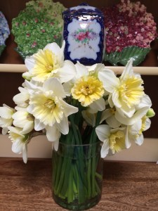Cut bouquet of daffs