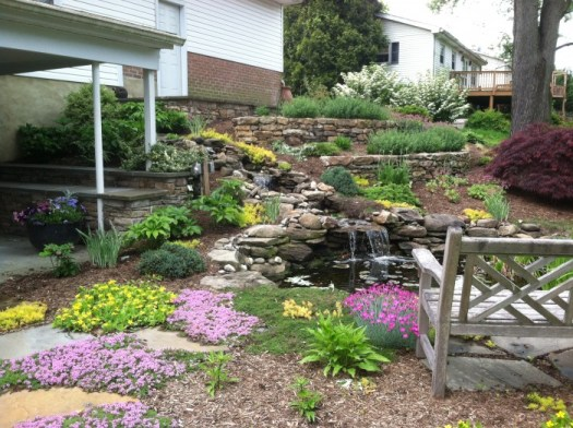 Pond area in spring with blooming thyme and Dianthus